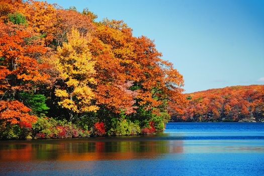 Autumn foliage over lake © Songquan Deng, 2013. Used under license from Shutterstock.com