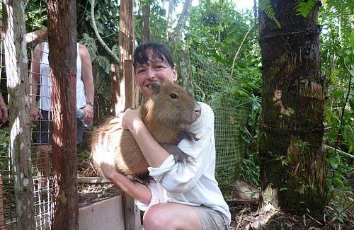 Wildlife voluntourism experiences are common throughout the world (Image: AmazonCARES)