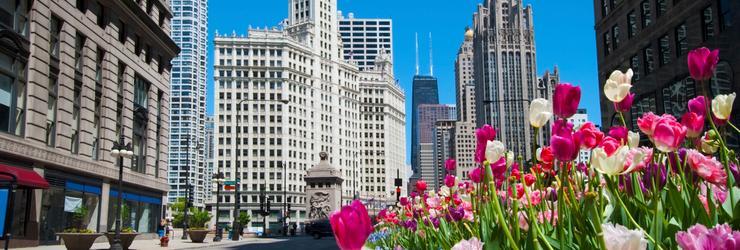 ac1d77674c254 Cheap Flights to Chicago - Search Round Trip Airfare Deals to ...